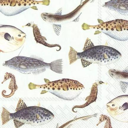 IHR Lunch napkins☆FISH OF THE SEA light blue☆(20 item)