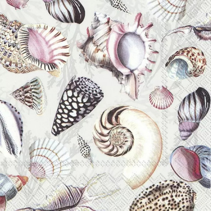 IHR Lunch napkins☆SHELLS OF THE SEA nature☆(20 item)